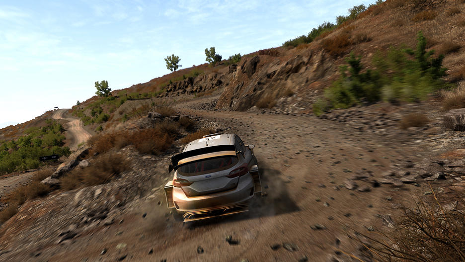 WRC: FIA World Rally Championship 8